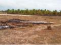 O local onde foi queimado também fica perto de vazante de nativos, onde se faz o cultivo de plantações.